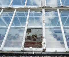 See Through (Peter E. Lee) Tags: talbotbotanicgarden glass spring window walledgarden brick republicofireland 2016 ire malahide panel plant castle missingpane ireland roi eire greenhouse dublin ie