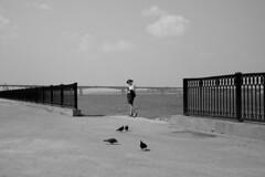(nVa17) Tags: street bridge summer blackandwhite bw woman girl river one blackwhite dove pigeons streetphotography stranger fujifilm streetphoto perm bnw blackandwhitephotography        53mm xt1