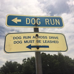 Dog Run Across Drive Dog Must Be Leashed Sign (stevendepolo) Tags: dog run across drive must be leashed sign