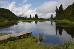 2016-07-Wiegensee-013 (unkel.unterwegs) Tags: alpen vorarlberg wiegensee austria sterreich see moor lake spiegelung alps mire alpine
