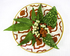 Tropical  Leaves and Flowers on Asian Plate (ocoombe@tampabay.rr.com) Tags: tabletopphotography stilllife