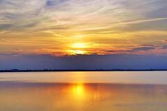 (Lorybusin) Tags: vista view paesaggi landscape paisaje wonderful natura naturaleza nature amazon awesome puestadelsol colores colori colors water riflessi italy tramonto laguna sunset sun mirror