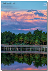 The Tree Line (Fraggle Red) Tags: florida palmbeachco boyntonbeach greencaywetlands greencay wetlands landscape nature morning calmmorning sunrise dawn clouds reflections boardwalk hdr 7exp dphdr canoneos5dmarkiii 5diii 5d3 canonef24105mmf4lisusm