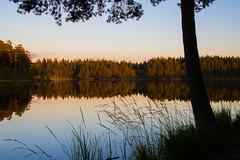 Nature (Anders Bromell) Tags: fs160911 natur fotosondag nature sjö lake borås pickesjön