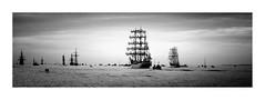 Vieux grements en Baie-de-Seine  Normandie  France (M.G6) Tags: trois baie de seine armada vieux bateaux mts troismts baiedeseine grements rouen noir et blanc