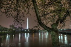 Washington Monument over Tidal Basin at Night