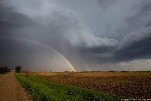 "Bonafide Hailbow • <a style=""font-size:0.8em;"" href=""http://www.flickr.com/photos/65051383@N05/17438926158/"" target=""_blank"">View on Flickr</a>"