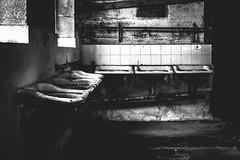 Wash Up (scotty-70) Tags: 35mm md sink minolta sony sydney wash a7 cockatooisland rokkor