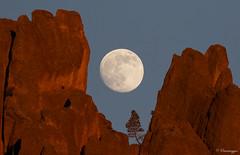 Moonrise over High Peaks (Omnitrigger) Tags: california moon fullmoon moonrise soledad lunar highpeaks westentrance pinnaclesnationalpark highpeakstrail