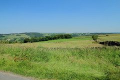 Countryside View (jdathebowler Thanks for 810,000+ views.) Tags: countrysideview dobparkroad otley northyorkshire england rural scene farmland drystonewalls landscape vividstriking greatphotographers