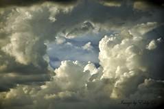 Monsoon's cloud action  #clouds #cloudporn #nature #sky #skyclouds #natgeo #arizonahighways #arizona #nikon #nikonphotography (Eddy Dinero) Tags: arizona sky nature clouds nikon cloudporn skyclouds natgeo arizonahighways nikonphotography