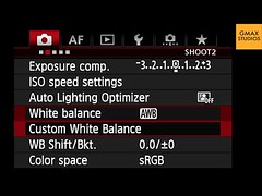 Canon DSLR Tutorial - Photography Tricks & Tips - How Do White Balance Canon DSLRs (reekendrasingh1) Tags: digitalslr photographylesson canoneos7d colorbalance learnphotography