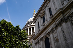 When I survey (chippy-minton) Tags: stpaulscathedral cathedral st pauls tree architecture stone brick cross