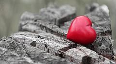 Liebe (Explore 18.07.16) (itsmagic2009) Tags: red rot love heart herz liebe 52wochenfotochallenge