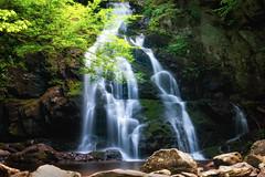 Spruce Flats Falls (jodell628) Tags: john odell family favs smoky mountain national park tremont spruce flats falls