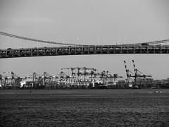 160720_018_P1110188 (oda.shinsuke) Tags: rainbowbridge crane bw