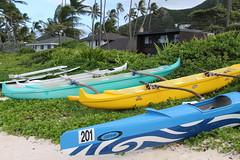IMG_5312 (C-N, Chen) Tags: lanikaibeach  honolulu  hawaii