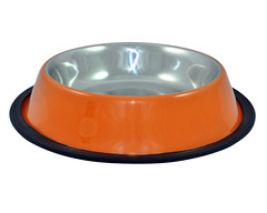 SKU 800:aGLOW Regular Non Skid Bowl with Color (TranscendentPet) Tags: dogs cats dog cat rabbit guinea pig birds parrot petbowls feeders waterers feedingtime