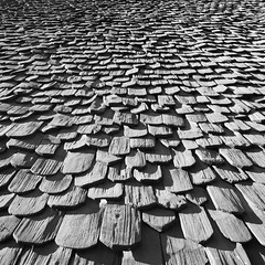 Cascade [ Explored ] (goAlafuente) Tags: tiles rooftiles roof bw blackandwhite blackwhite house cascade progression sony 6300 a6300 explore explored