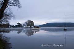 Cloudy morning (Anna Calvert Photography) Tags: canberra lotusbay australia water trees reflections landscape outdoors fog winter yacht boat nature