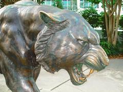 LSU Tiger (faraway3000) Tags: lsu tiger statue batonrouge louisiana bronze mascot