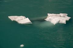 Starberg (acheron0) Tags: alaska glacierbay green ice nationalpark ocean water