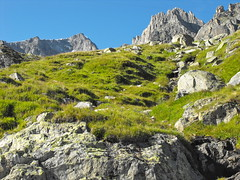 1008250580 (loulou67240) Tags: switzerland suisse furka mountains rock furkapass alpes alpen felsen schweiz berge alps