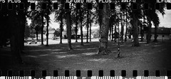 2016-08 - 069SR - DSC_9987 (sarajoelsson) Tags: sprocketrocket blackandwhite bw panorama panoramic sprocketholes digitizedwithdslr toycamera ilford sweden 135 35mm 2016 hp5 monochrome plasticlens everydaylife filmphotography filmisnotdead believeinfilm filmshooter film wideangle biskopsarn hc110 lomography lomo summer august