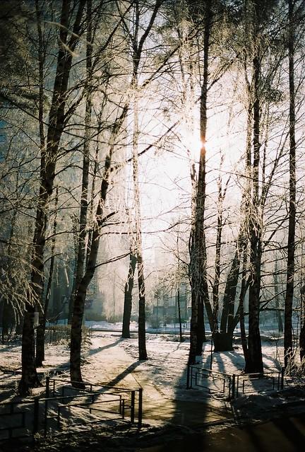 cold morning. -20 ºC