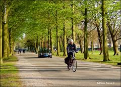 Entardecer no Clingendael park (Adriana Paiva *) Tags: holland primavera bike europa natureza parks bikes denhaag bicycles viagem holanda thehague fietsen fiets bosques parques clingendael haia jornalistaadrianapaiva benoordenhout holandeses landgoedclingendael blogadrinascidades