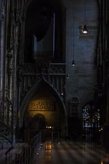 Comfort in Darkness- Vienna, Austria (Flortography) Tags: vienna old shadow building history church glass dark austria europe noir darkness gothic eu historic stained inside plague thebestofday gnneniyisi