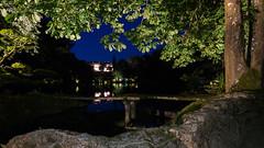 DSC05466 (regis.verger) Tags: temple zen nuit parc nocturne asiatique vgtal maulvrier