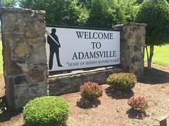 Welcome to Adamsville (michaelwfreem) Tags: tennessee adamsville