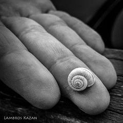 When you start exploring big oceans, you start with small things... (Lambros Kazan) Tags: sea hand shell blackandwhite find 7 oppo find7 mobile