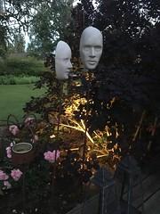 Dusk in the garden (Göran Nyholm) Tags: