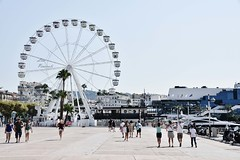 12. (lisapinciroli) Tags: ferris wheel city