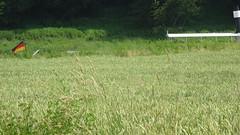 Oberdeck (klaffi60) Tags: elbe rathen