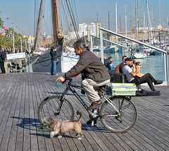Spain (Barcelona) Wallking the dog with a bicycle (ustung) Tags: barcelona street dog bicycle port spain outdoor walk candid citylife velle kudak