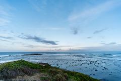 M1140399.jpg (meerecinaus) Tags: longreef beach collaroy newsouthwales australia au