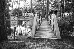 Beware Dangerous Animals (lavish.perspective) Tags: morning bridge camping trees shadow camp blackandwhite early dangerous pond cabin woods florida beware camper woodenbridge lightandshadow campsite noswimming earlymorninglight mexicobeach dangerousanimals offthebeatentrack travelingwithfamily tinyisland campinginflorida lavishperspective lavishperspectivephotography lizacochran lizawilliams mexicobeachrusticsandscampsiteflorida tinyislandinapond