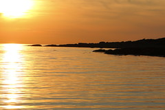 Sunset at steninge! (Halmstad) (m.rsjoberg) Tags: steninge halmstad hav vatten water