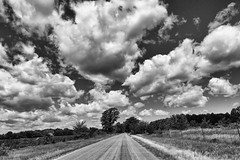 Summer in the County (gabi-h) Tags: road summer monochrome clouds fence vanishingpoint dramatic princeedwardcounty gabih fencefriday