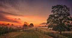The Path To Dawn (Captain Nikon) Tags: mist misty sunrise dawn moody pano derbyshire panoramic stitched sawley nikon18105mm nikond7000