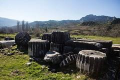 column pieces (mdoughty68) Tags: roman hellenistic ruins column ancient turkey turkiye sart sardes historical salihli