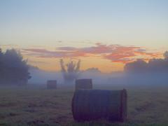 before the sun was coming _8140156 (hans 1960) Tags: outdoor sommer mist misty himmel sky colour heuballen hayballs nature natur landschaft landscape red rot