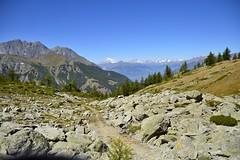 Verso il col di Bellalanaz (Paolo DELMASTRO) Tags: clavalit coldibellalanaz montebianco grandesjorasses