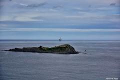 Izaro. (Howard P. Kepa) Tags: paisvasco euskadi bizkaia ibarranguelua marcantabrico urdiabai isla plataformadegas lagaviota