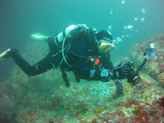 18 July 2016 - Scillies Trip PICT0197 (severnsidesubaqua) Tags: scillies scilly scuba diving