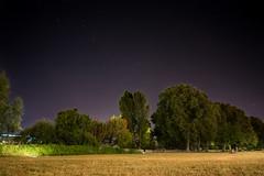 Voute (Mr.Totoxo) Tags: longuepose stars ciel tot trees arbres gh4 samyang 12mm herbe paysage rve couple srnit