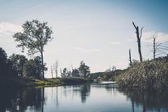 DSCF2623 (peterulrich.net | Berlin Webdesigner) Tags: spree brandenburg kajak kayak kajaktour kayaktour kajaktrip kayaktrip gumotex gumotexswing2 kanu schlauchkajak peterulrichnet 2016 august schlauch fluss river